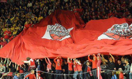 Brissac Aubance Basket débutera ses matchs de préparation contre Niort, le Mardi 26 Août.