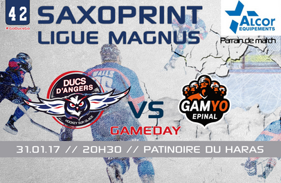Ligue Magnus (42e journée) : Les Ducs d'Angers reçoivent les GAMYO d'Épinal, en match avancé.