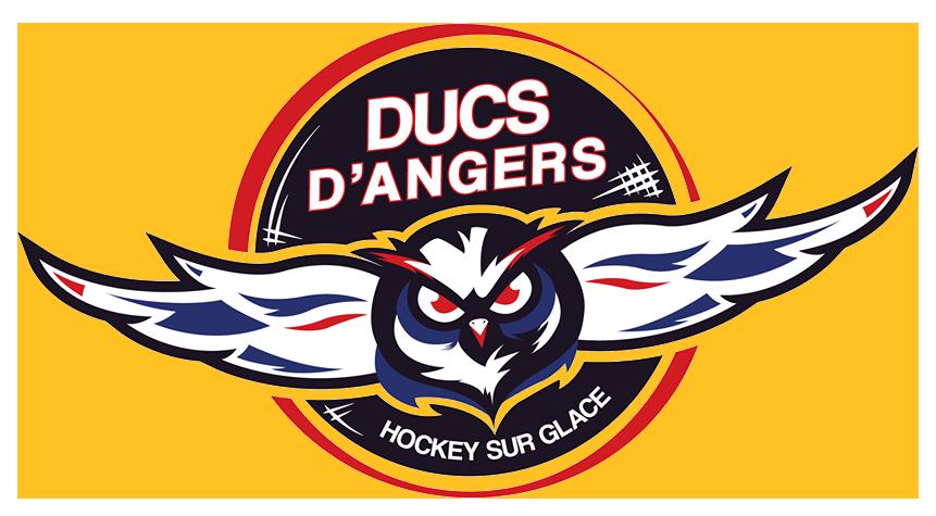 Trois joueurs français viennent renforcer les Ducs d'Angers, pour la saison 2018/2019 !