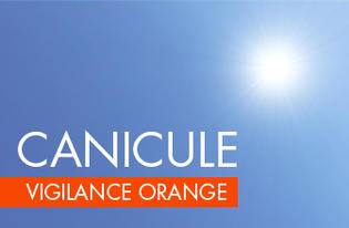 Vigilance orange canicule : Amis sportifs, évitez toutes activités physiques et sportives aujourd'hui.