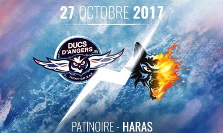 Ligue Magnus (16e journée) : Les Ducs d'Angers reçoivent le leader Grenoblois, ce vendredi à 20h30 !