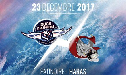 Ligue Magnus (28e journée) : Angers reçoit Amiens : La promesse d'un spectacle garanti !