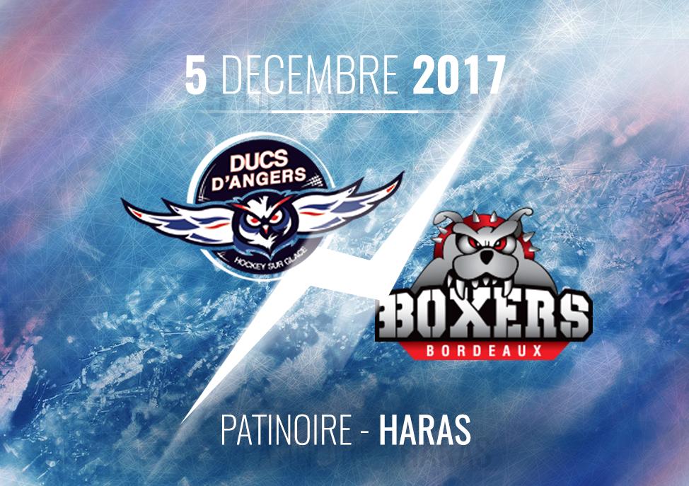 Ligue Magnus (26e journée) : Les Ducs d'Angers reçoivent les Boxers de Bordeaux, ce mardi, à  20h30 !