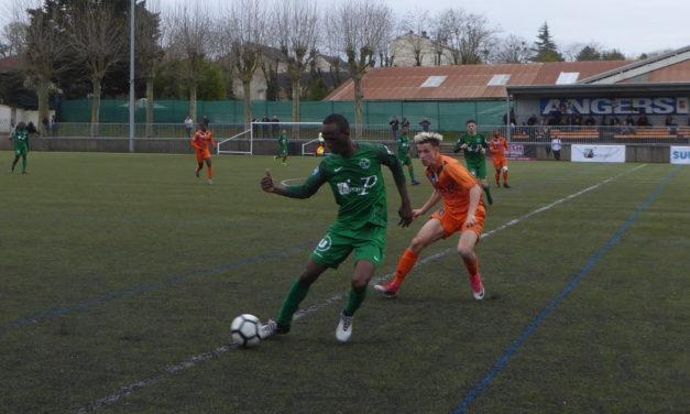 National U19 (23éme journée): La Vaillante Angers arrache un bon nul face à Laval (2-2).
