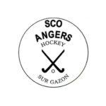 Le SCO organise le Championnat de France Tournoi Qualificatif N2 Hommes de Hockey en salle.