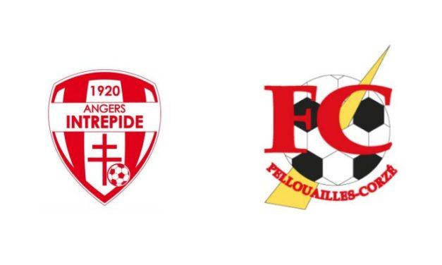 Match de préparation instructif entre Angers Intrépide et Pellouailles-Corzé (2-0).