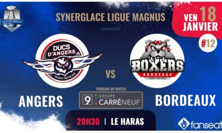 Ligue Magnus (12e journée) : Grosse réaction attendue des Ducs d'Angers face à Bordeaux !