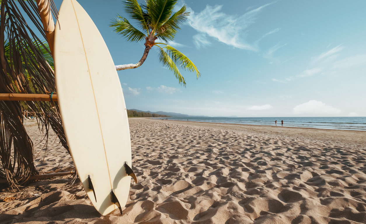 Zoom sur les planches Bing Surfboards.